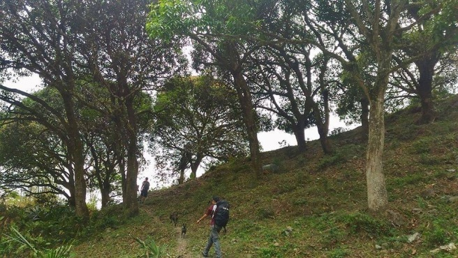 Naupa trail